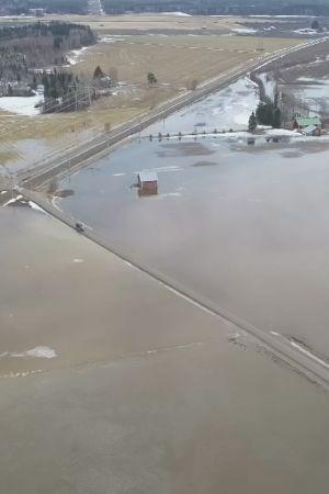 Peltoja, jotka tulvavesi on peittänyt.