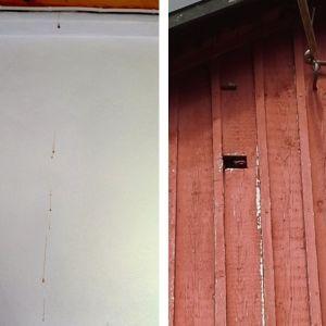 Henrika Ringbom undrar vems avföring rinner från vinden längs väggen.