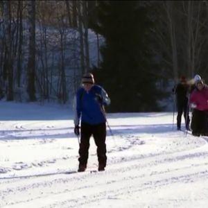 Hiihtäjät hiihtävät latua pitkin