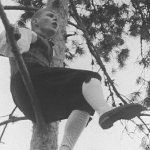 Mies istuu puun oksalla ja laulaa.