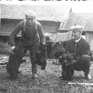 Kuvassa Nikolai Ponkkonen ja Yrjö Rovio kolmen pyydystämänsä karhunpennun kanssa.