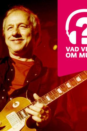 Mark Knopfler leende på scenen med elgitarr i händerna.