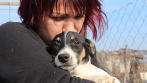 Salla Honkapää pitää koiraa sylissään Glinan koiratarhalla Romaniassa