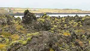 Vulkanlandskap i Island