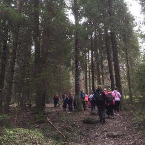 25 pedagoger från Finland bekantade sig med I Ur och Skur-dagis.