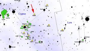 Karta där Tabbys stjärnas läge framgår.