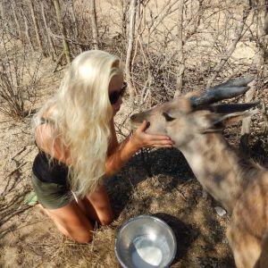 Michelle  Gustafsson i Botswana, ökenlandskap, sitter på knä och klappar en antilop
