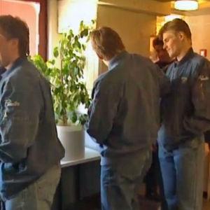 Finlands Lejon 1995