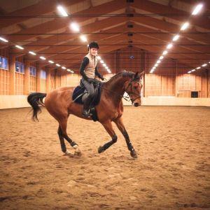 Hevonen ja ratsastaja maneesissa.