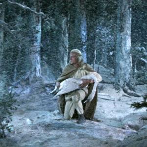 Kun aurinko on varastettu, joutsenetkin kuolevat lentoon. Lemminkäinen elokuvassa Sampo.