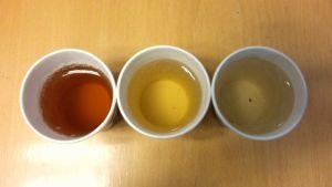 Tre olika sorters te.