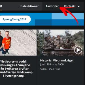 Skärmdump från Yle Arenan.