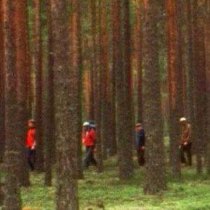 Ihmisiä metsässä