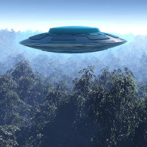 Ufo över en skog.