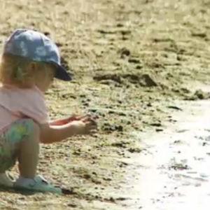 Barn som leker på stranden.