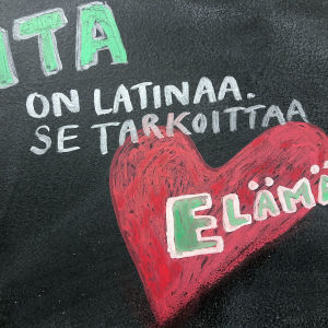 Vita on latinaa. Se tarkoittaa elämää.