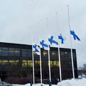 Stadshuset i Imatra på måndagen.