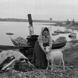 Kolttien leudd- ja käsityöperinteen taitaja Domna Sanila (1911–2003) lampaineen Sevettijärven Ukonselän rannass