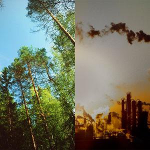 Bildcollage av en grön och lummig skog, och ett fabriksområde med mycket utsläpp.