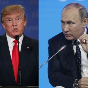 En bild av Donald Trump och en av Vladimir Putin sammanfogade