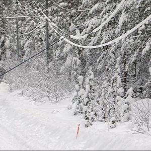 Rovakairan Verkonrakennus Oy:n työntekijä puhdistaa eristetyllä työkalulla lumisia linjoja Rovaniemellä.
