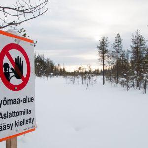 Kaivosyhtiö tekee koeporauksia suojellulla Viiankiaavalla Sodankylässä.