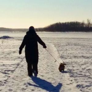 Myös koirat ovat tervetulleita kävelyuralle.