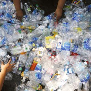 Muovijätettä lajitellaan.