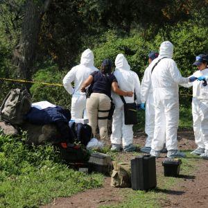 Rikospaikkatutkijat selvittivät rikollisjengien välienselvittelyssä kuolleiden murhaa Michoacanissa myös vuonna 2016.