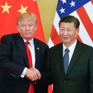 Donald J. Trump ja Xi Jinping.