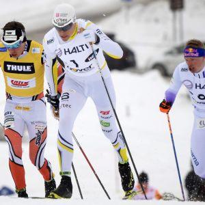 Ari Luusua (vas.), Matias Strandvall ja Iivo Niskanen Taivalkosken SM-kisojen sprinttifinaalissa.