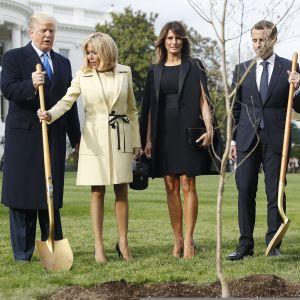 Yhdysvaltain presidentti Donald Trump, Ranskan presidentti Emmanuel Macron sekä puolisot Melania Trump ja Brigitte Macron istuttavat puita Valkoisen talon pihalla.