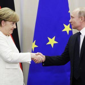 Vladimir Putin ja Angela Merkel kättelevät Sotšissa.
