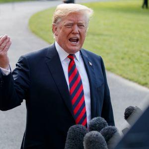 Yhdysvaltain presidentin Donald Trumpin mukaan Venäjän tulisi saada palata takaisin G7-ryhmään.