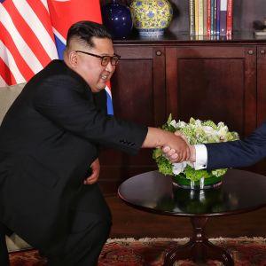 Donald Trump ja Kim Jong-un kättelevät