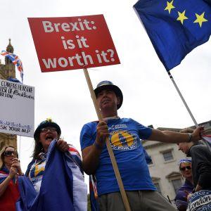Brexit-mielenosoitus