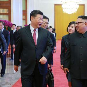 Xi Jinping ja Kim Jong-un