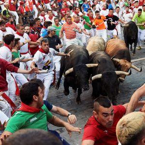 Härkäjuoksua Pamplonassa