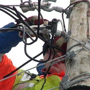 Sähkömies korjaamassa vaurioituneita sähkölinjoja.
