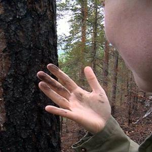 Henkilö katsoo nokista kättään.