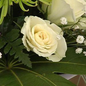 Valkoisia ruusuja ja harsokukkaa.