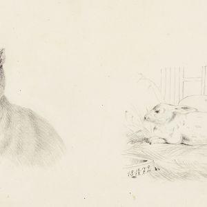 Sivu Helene Schjerfbeckin piirutuslehtiöstä vuodelta 1872.