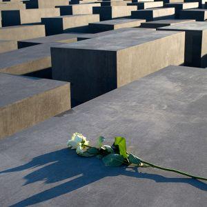 Valkoinen ruusu holokaustissa kuolleiden juutalaisten muistomerkillä Berliinissä.