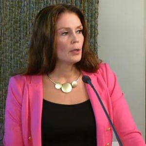Lulu Ranne puhuu valtuustosalissa