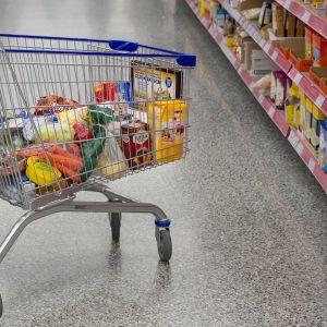 Ruokaostoksia kaupan kärryssä.