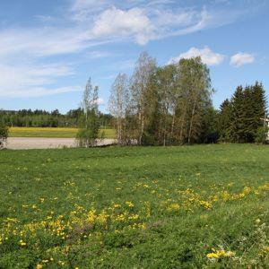 Laukaan Leppäveden kulttuurihistoriallisesti arvokas maisema.