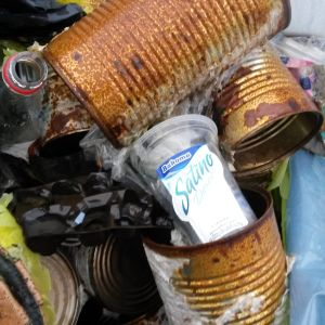 Ruostuneita peltipurkkeja ja muovipulloja.