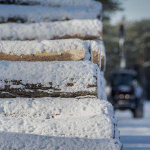 Lumen verhoama puupino metsätien varrella. Taustalla traktori.