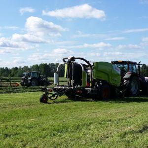 Halsualaiselle pellolla korjataan säilörehua.