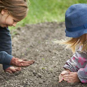 Maya Peltola ja Elsa Schröder Kumpulan koulukasvitarhan viljelyleirillä